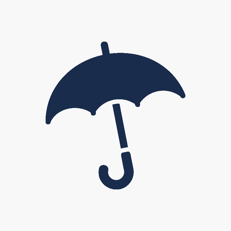 Blue Shield Umbrella | © www.iconfinder.com/Introwiz1